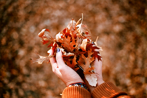 7 Things To Love About The Fall
