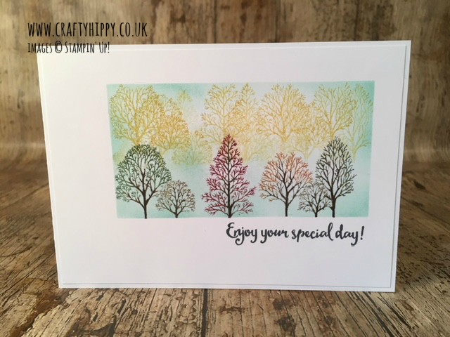 This picture shows a hand stamped card made using the Lovely As A Tree stamp set by Stampin' Up!; several trees with different coloured leaves sit inside a Pool Party sponged box.