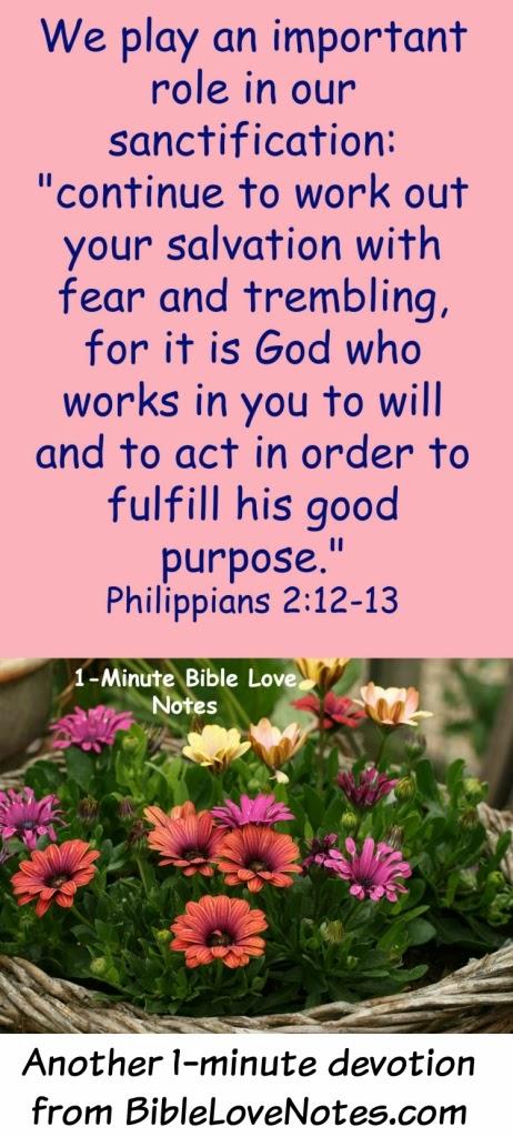 Sanctification, Philippians 2:12-13, our role in sanctification
