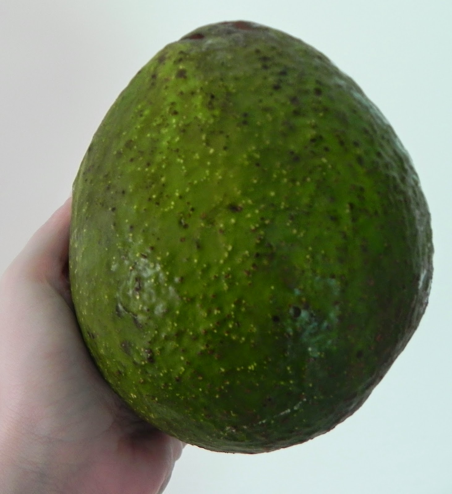 macarrao com molho de abacate