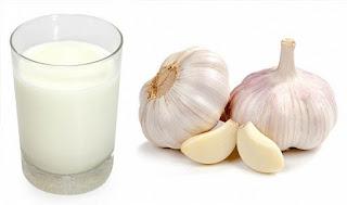 Cách trị viêm họng bằng tỏi kết hợp với sữa nóng