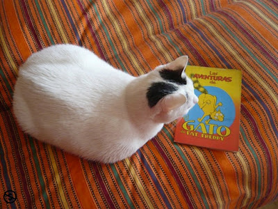las-aventuras-de-el-gato-de-fat-freddy