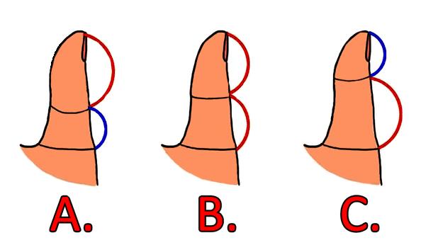 lungimea degetului mare indica detalii interesante despre tine si modul tau de aborda relatiile