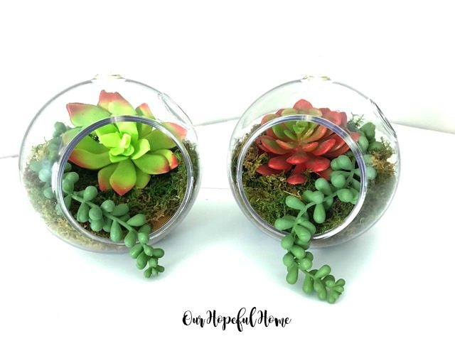Our Hopeful Home Simple Dollar Tree Diy Succulent Terrariums