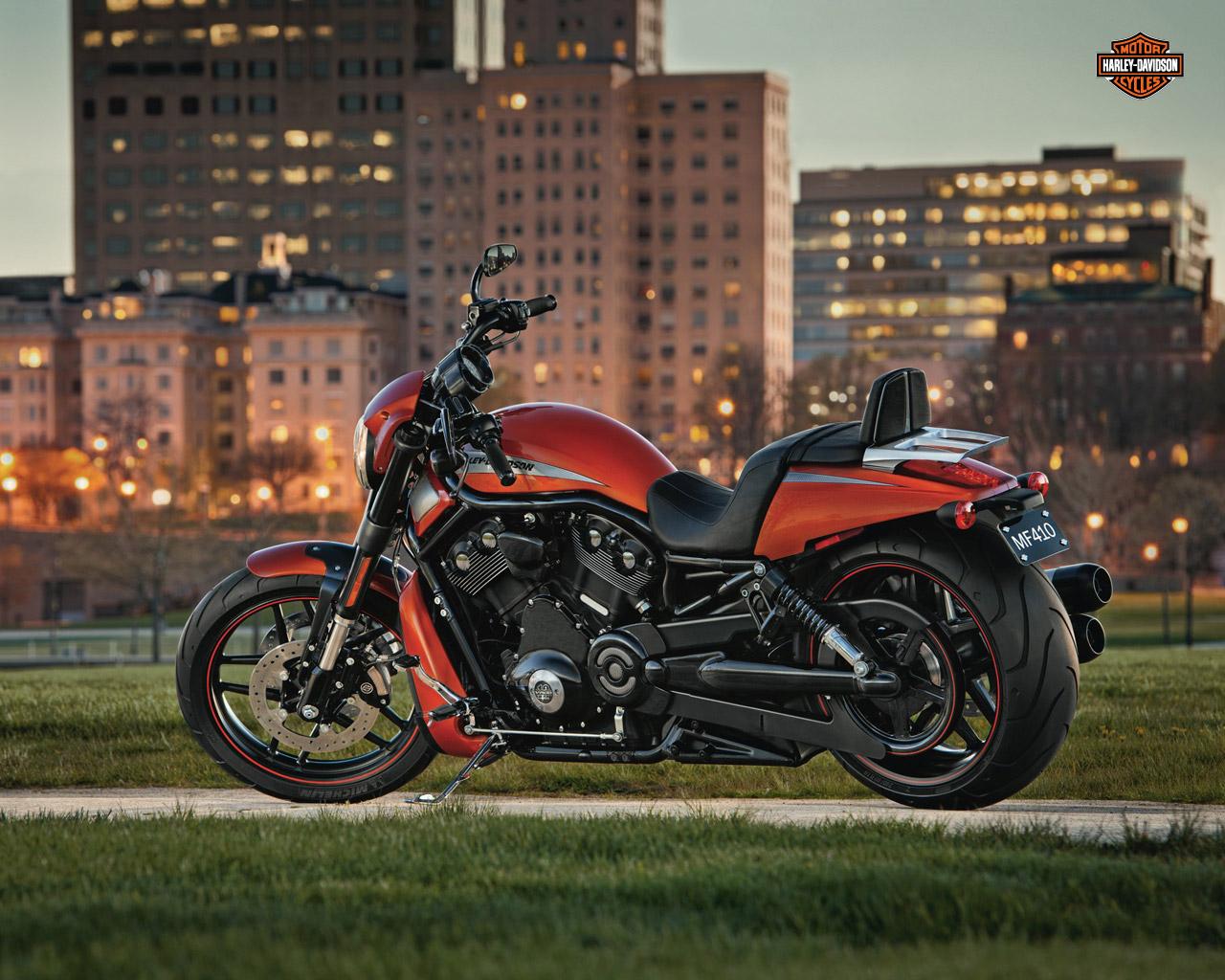 Buy 2012 Harley Davidson Vrscdx Night Rod Special: Harley Davidson: 2012 Harley Davidson VRSCDX Night Rod Special