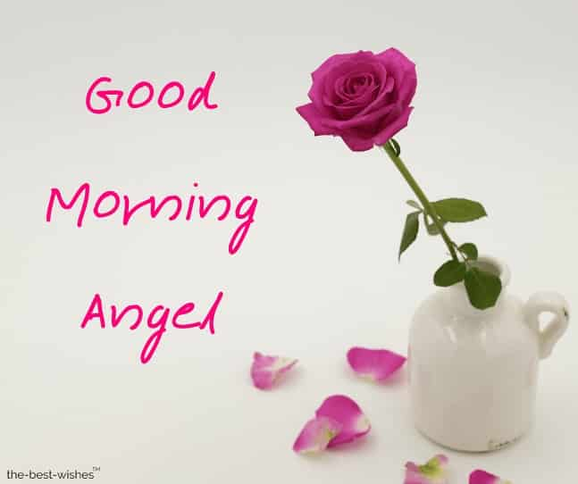 good morning angel pictures