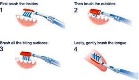 Cara Menyikat Gigi yang Tepat – yang Belum Anda Ketahui