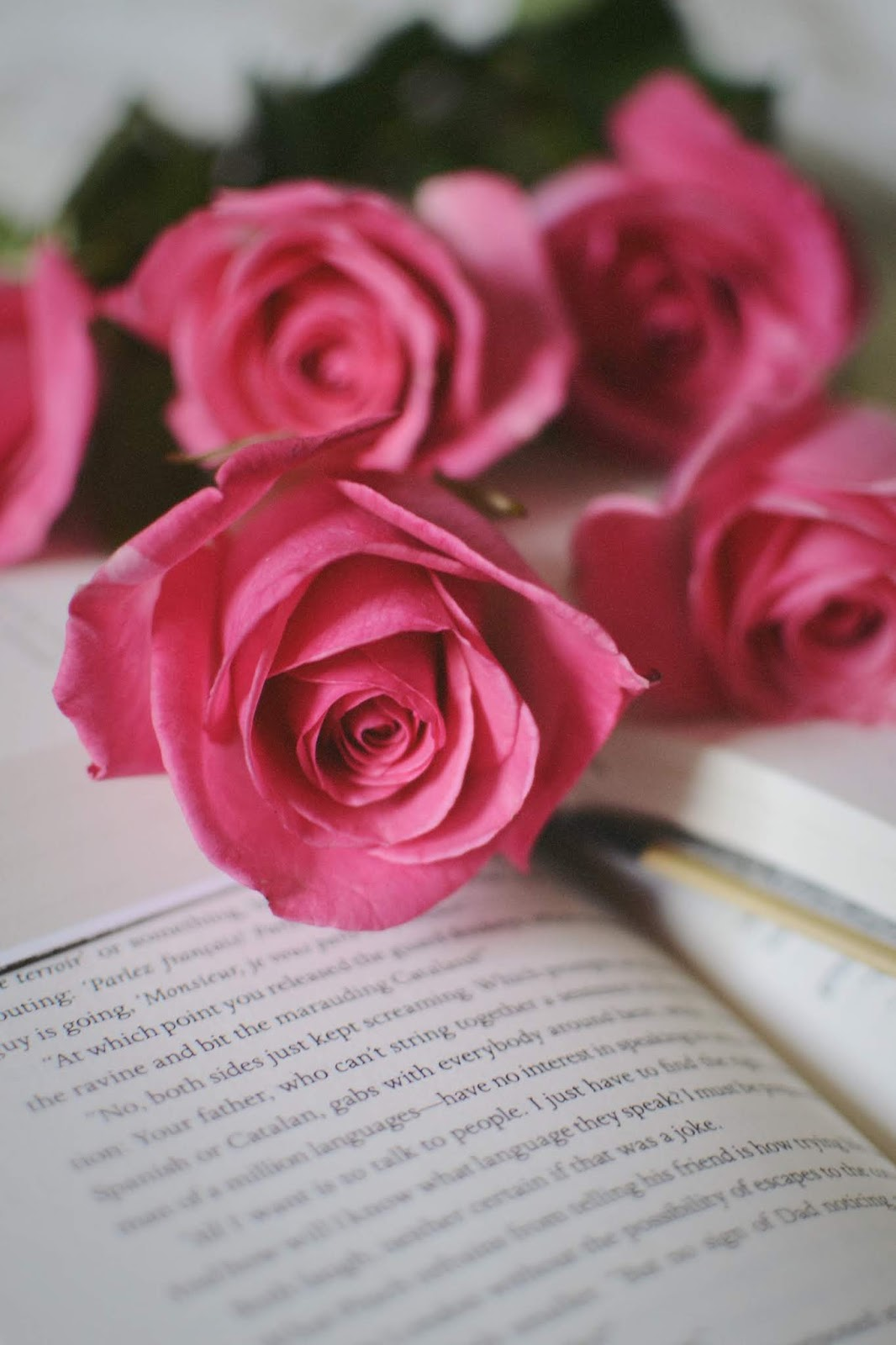 books and roses flower chapters indigo aleesha harris