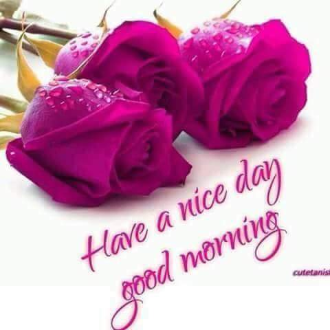 good Morning Whishes for friend