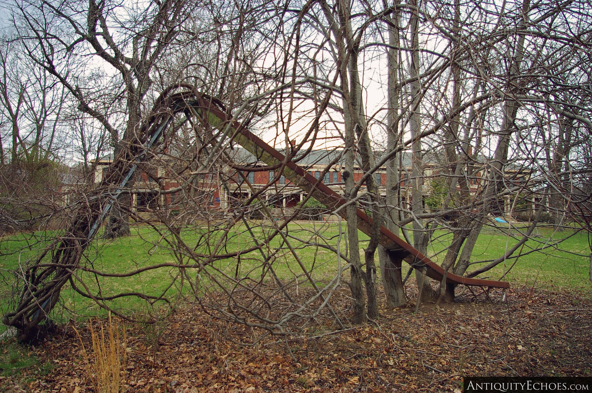 Overbrook Asylum - Slide Wrapped in Vines