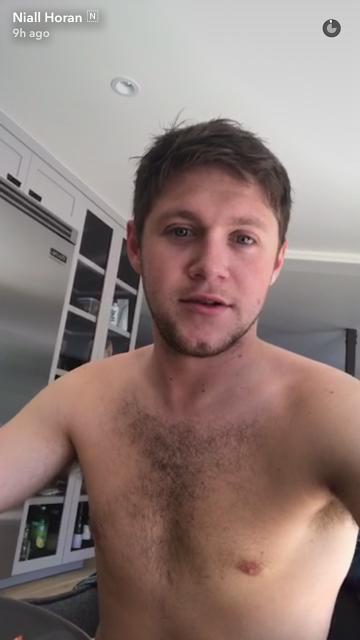 Male Celebrities — Niall Horan