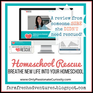 Homeschool Rescue: A self-paced eCourse for EVERY Homeschooling Parent {Product Review}