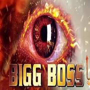 Bigg Boss Season 8 Day 22 Episode 30 - 19th October 2014 | Watch