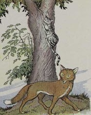 Dongeng Kucing dan Rubah (Aesop) | DONGENG ANAK DUNIA