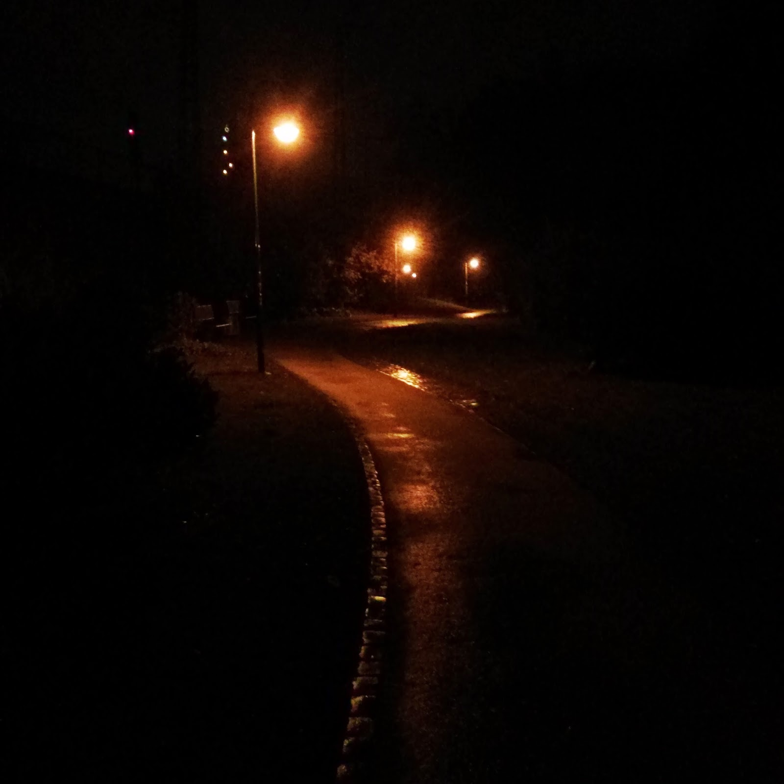 sehen pferde im dunkeln
