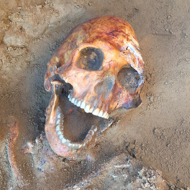 Sarmatian warrior tomb discovered in southern Russia