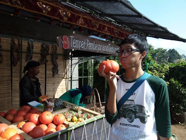 Taman Begonia Lembang