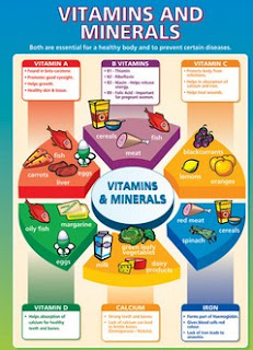 Important Of Mineral Supplements And Vitamins
