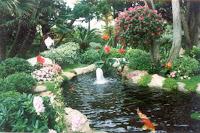 Koi Pond Filter