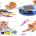 Cat Toys | Why Buy it
