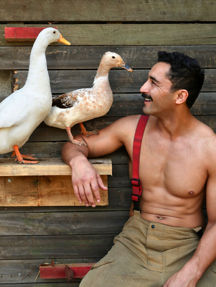 Adorably Hot Pictures Of Australian Firefighters Posing With Animals For 2020 Charity Calendar