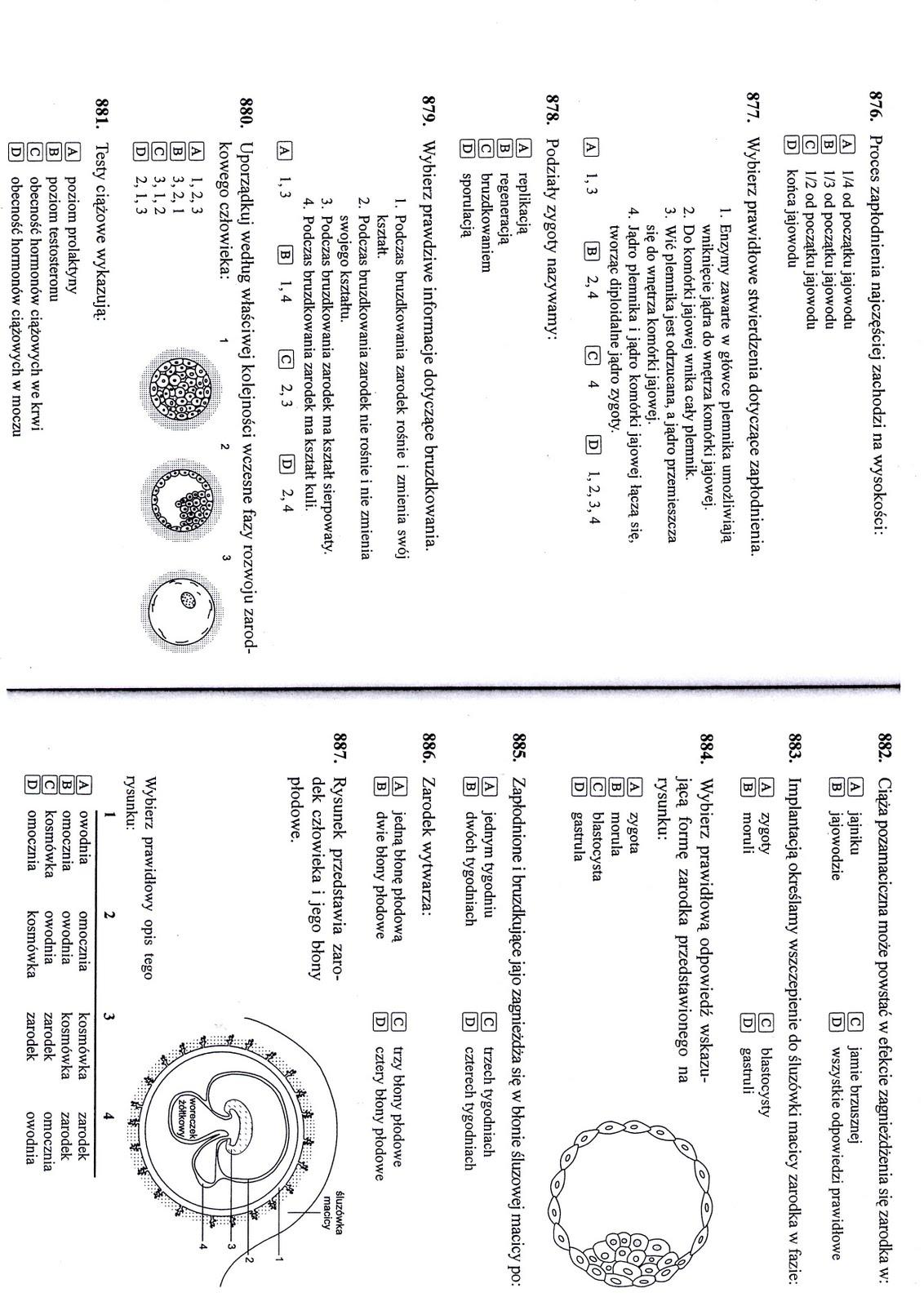 Fantastyczna biologiczno-chemiczna:): Układ rozrodczy