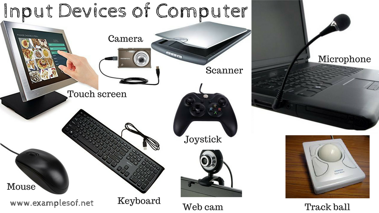 10 Examples of Input Devices of Computer | ExamplesOf net