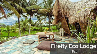 pulau dewata, pulau di bali, wisata bali, pantai bali, hotel di bali, Firefly Eco Lodge - Bali
