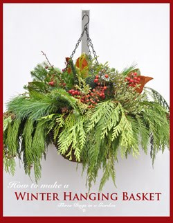 Making a Seasonal Hanging Basket