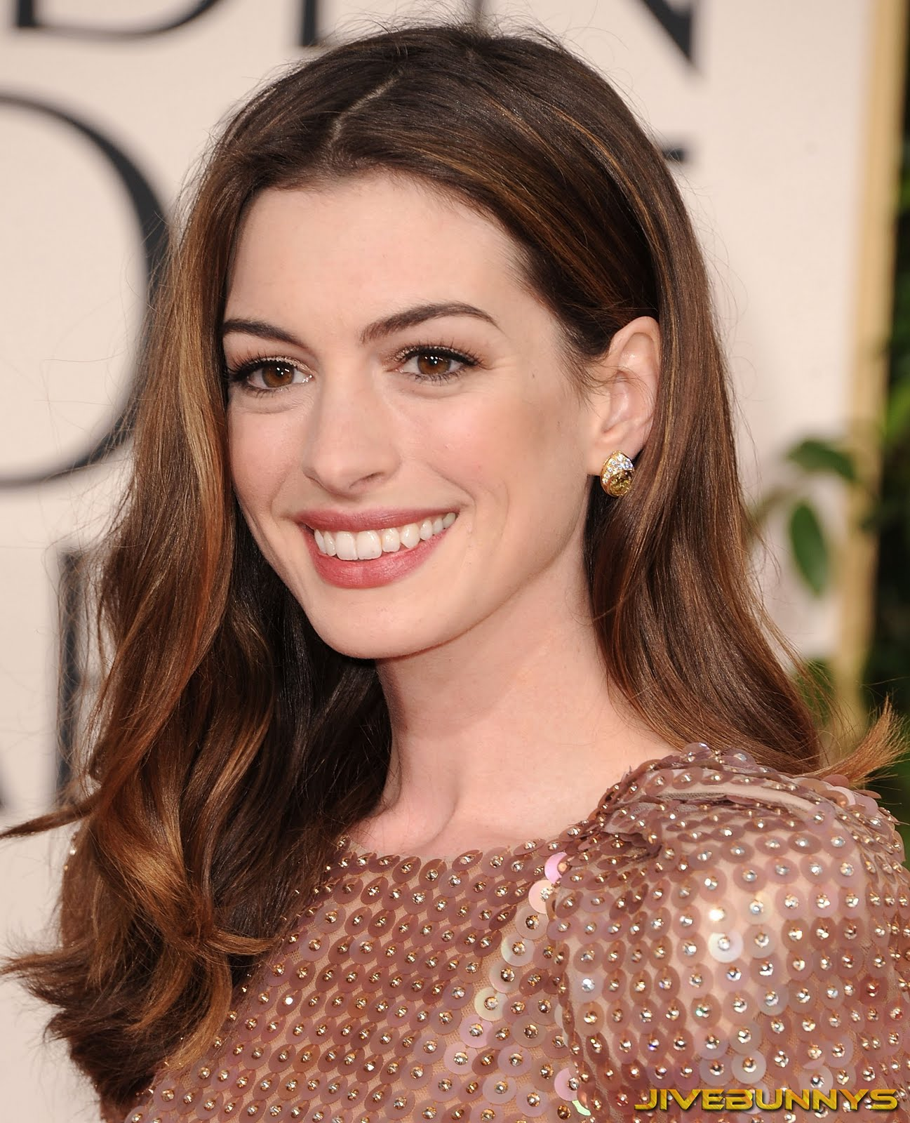 Anne Hathaway Special Pictures (3)