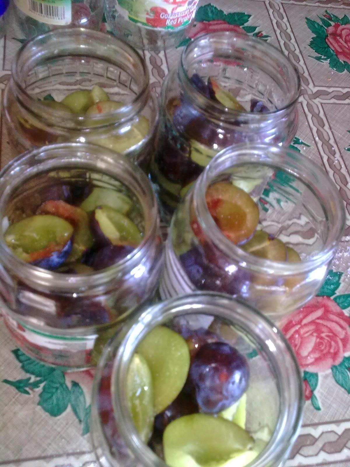 etapă în pregătirea compotului de prune pentru iarnă