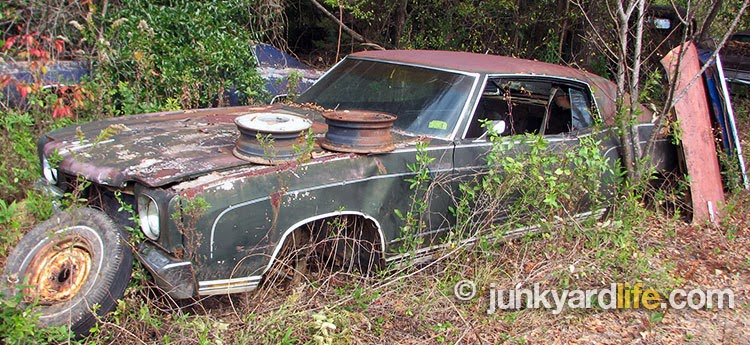 1971 Chevy Monte Carlo sits in the weeds at Thompson's junkyard in south Alabama.
