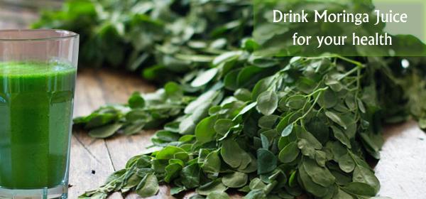 Lá Chùm Ngây có nguồn Đạm nhiều hơn cả Đậu nành: 'Pure Healing Foods'