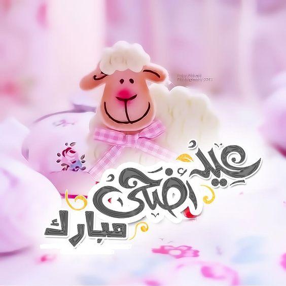 cute eid al adha pink