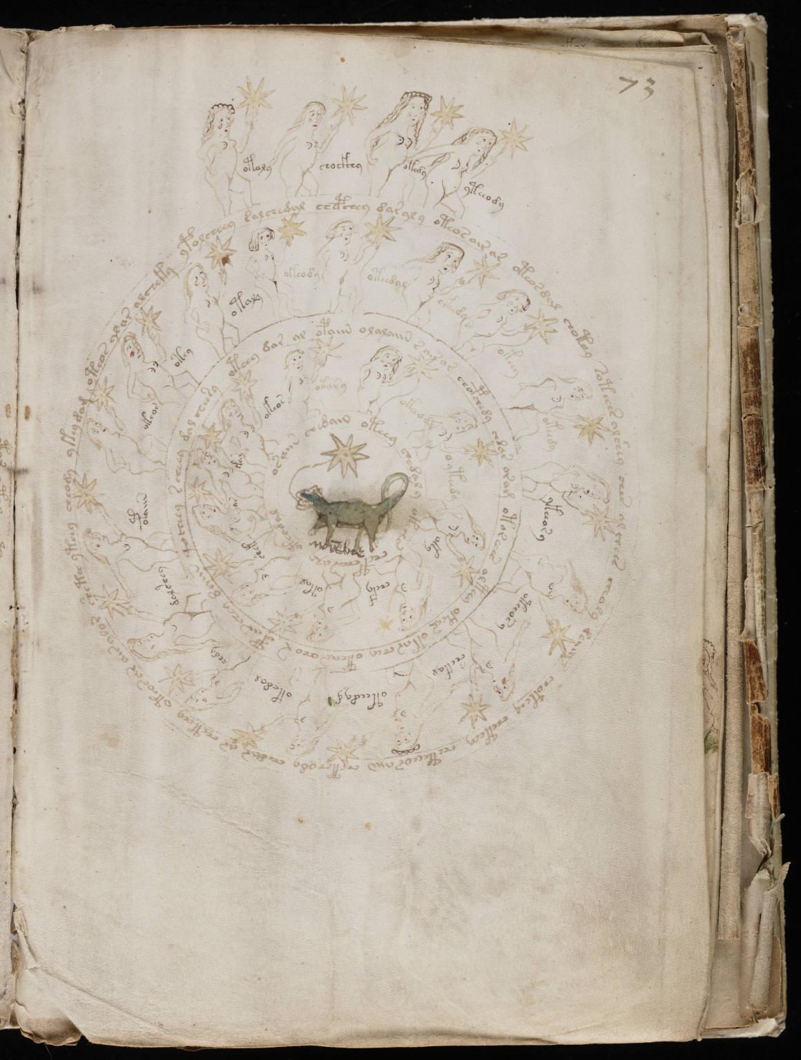 manuscrito132