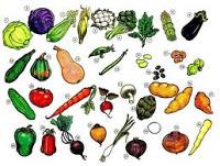 Kosakata Korea – Makanan dan Sayuran