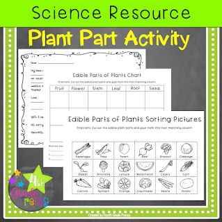 Edible Parts of Plants Activity