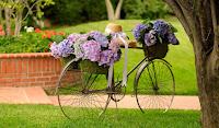 Nostaljik Bisiklet Fotoğrafları HD