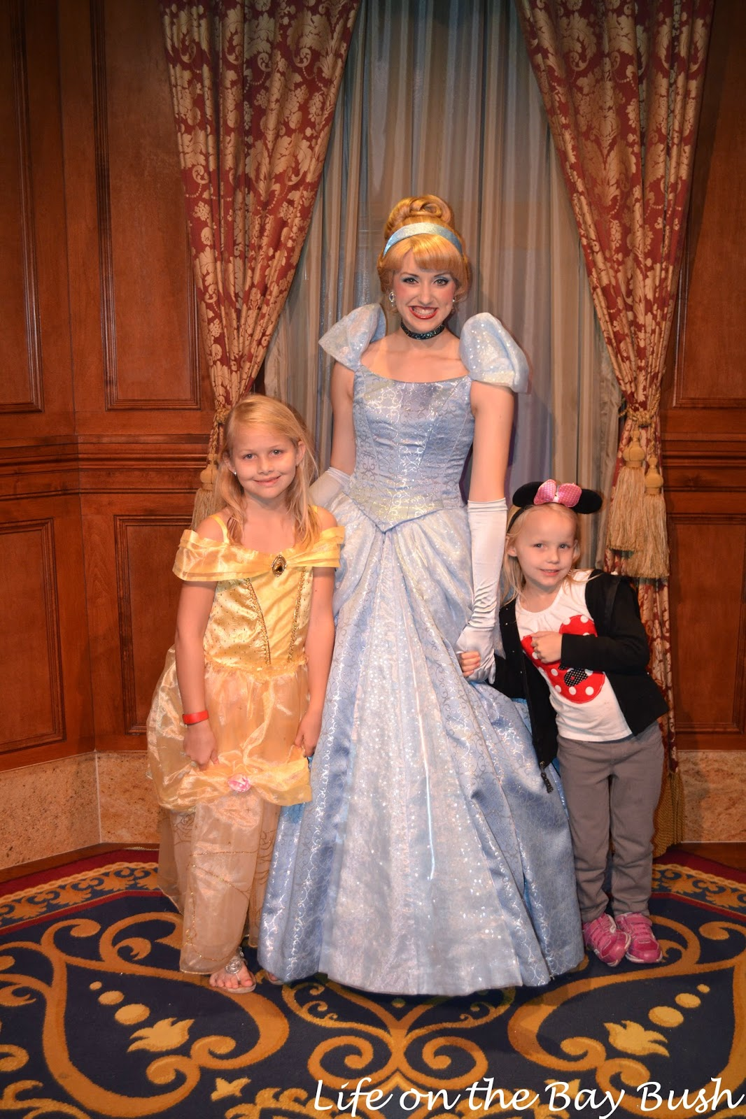 Disney's Magic Kingdom Meeting Cinderella