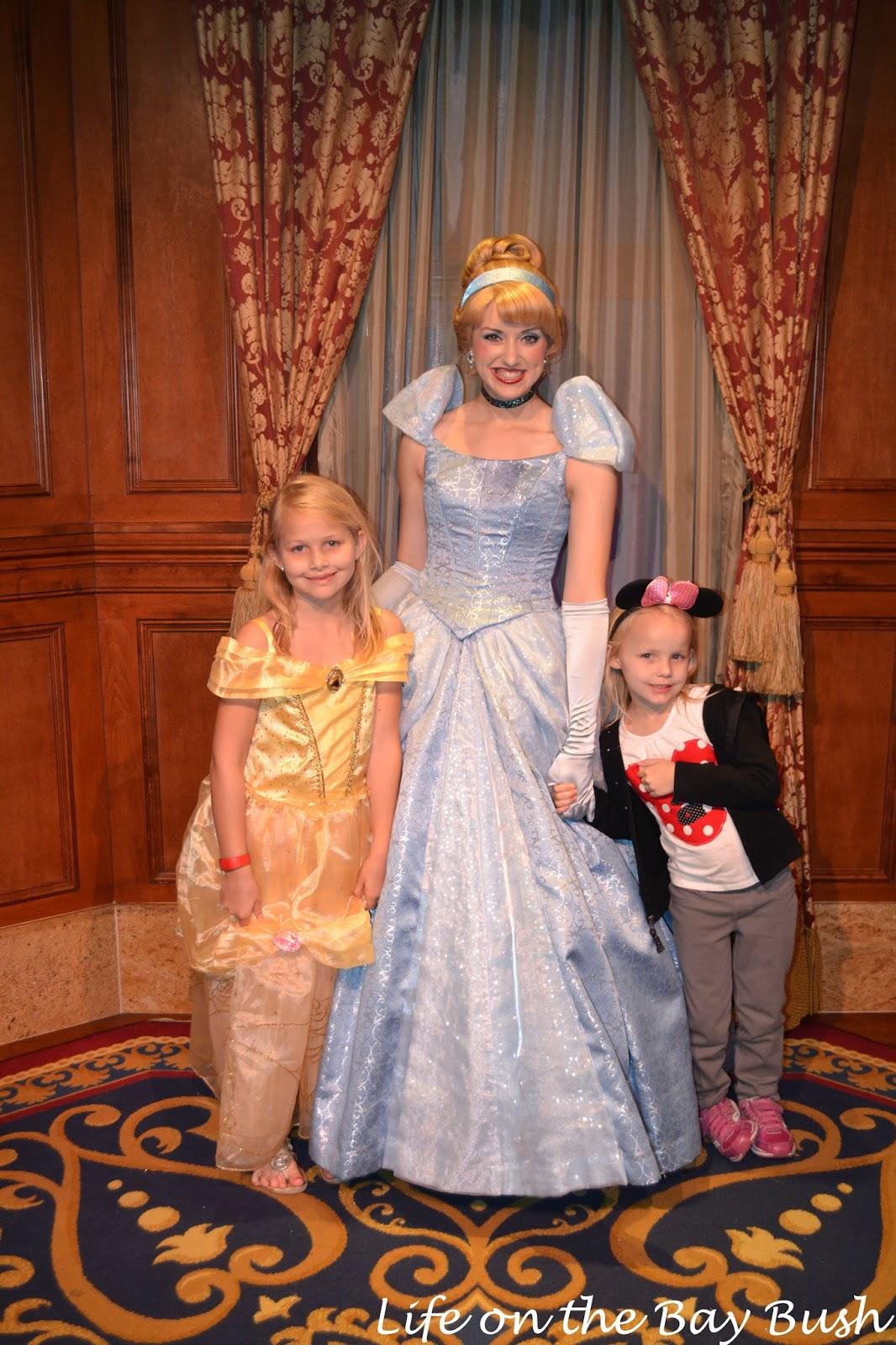 Disney's Magic Kingdom Meeting Cinderella