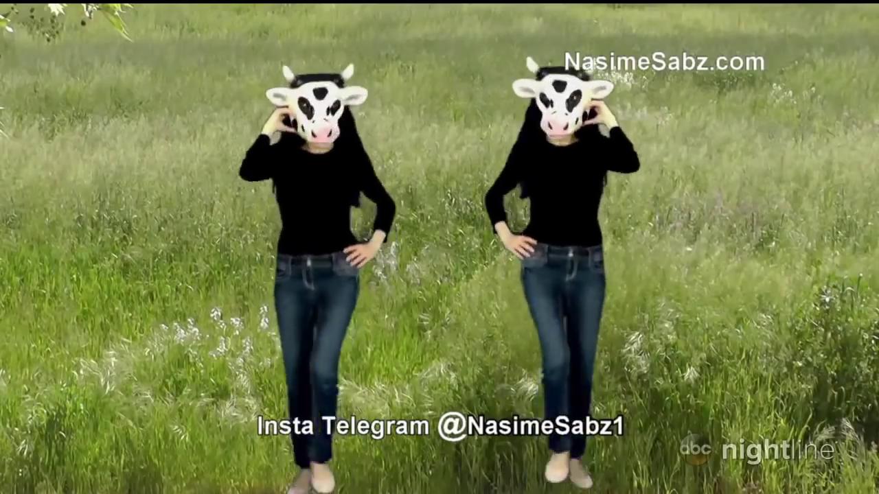 ماذا فعلت نسيم أغدام Nassim Aghdam قبل اطلاق النار في مقر يوتيوب و مارد فعل عائلتها