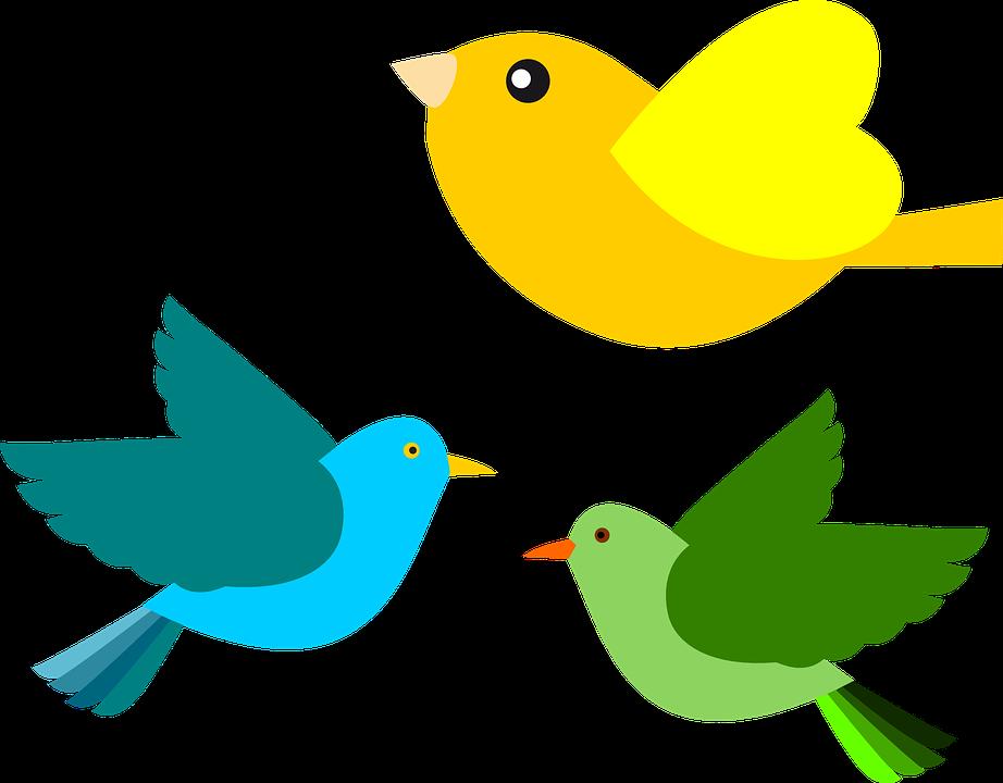 kisah petani dan burung camar