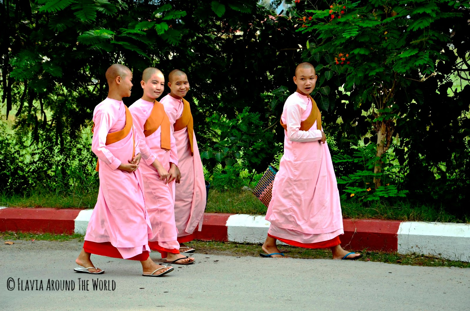 Monjas budistas en en lago Inle