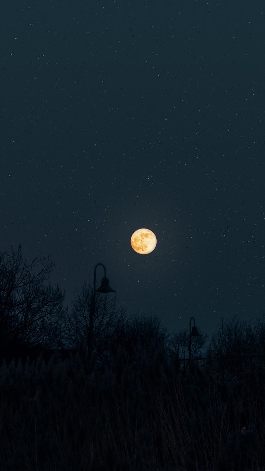 Under full moon