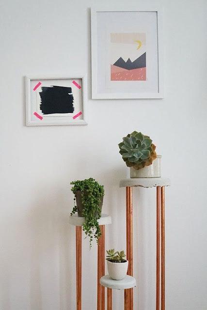 high-plants