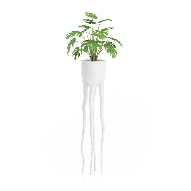 3D model free -  Plants_08