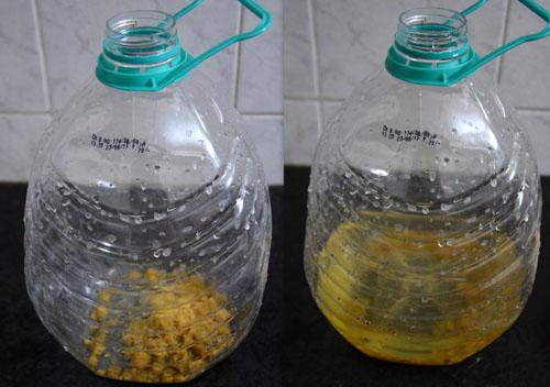 Toxic free citrus cleaner