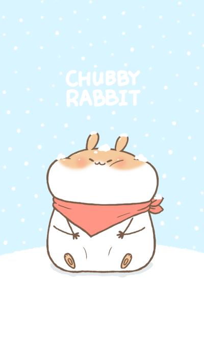 Chubby Rabbit-Snow