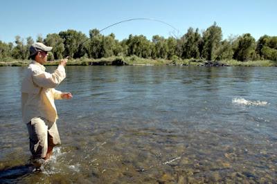 Image 4 : Henry's Fork River, Idaho