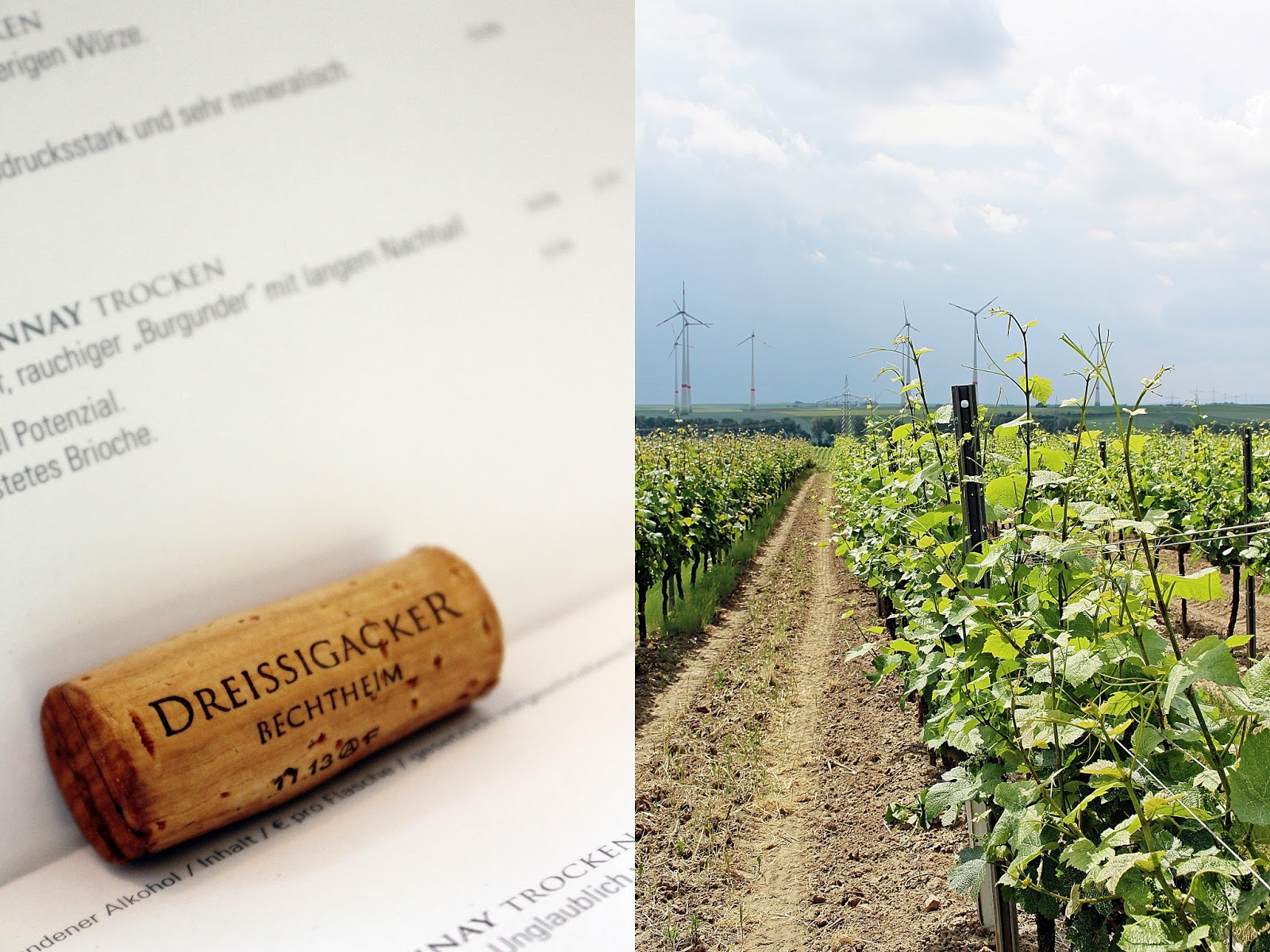 Aktuelle Preisliste und Weinberge des Weinguts Dreissigacker